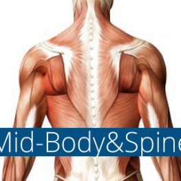 Trigenics mid-body and spine course