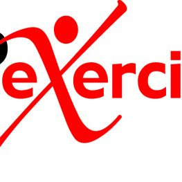 webexercises rehabilitation system