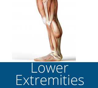 lower extremities course