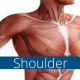 Trigenics shoulder course
