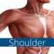 Trigenics shoulder course